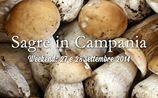 Sagre Campania