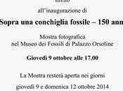 """""""SOPRA CONCHIGLIA FOSSILE"""" iniziativa Gruppo Paleontofili Fidentini"""