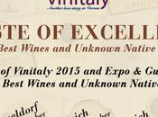 Tour europeo 2014 Vinitaly International