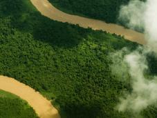 Borneo 2014. Partita spedizione Nikon indagare deforestazione
