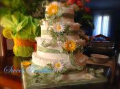 ☆☆Una torta matrimonio?!? Nooooo!!!! bellissima festa!!!☆☆