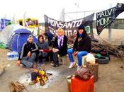 ARGENTINA Accampati anno contro Monsanto nessuno parla
