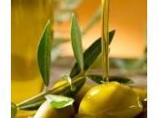 colpa clima crolla Sicilia produzione dell'extra vergine d'oliva