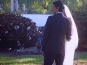 1186 matrimonio