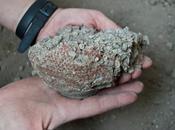 Pompei, ritrovati vasi argilla pronti essere infornati