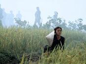 Film stasera sulla chiaro: CIELO TERRA Oliver Stone (sab. nov. 2014)