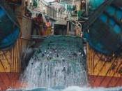 """Greenpeace: """"Venti mega pescherecci stanno distruggendo mari oceani"""". denuncia anche produzione tonno scatola"""
