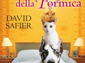 L'orribile Karma della Formica David Safier