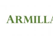 Armillaria, un'istantanea sulla diversità