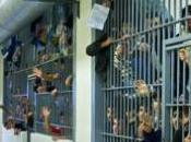 vergogna delle carceri italiane