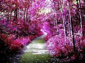 amore, autunno,dolcezza………..