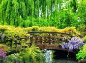 Natura meraviglia