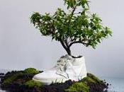 scarpe concimano terra