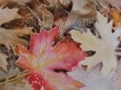 leaf foglia rossa