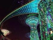 Supertree Grove Lighting wonderful Singapore