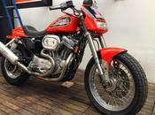 Harley Sportster 883R Carlo Talamo