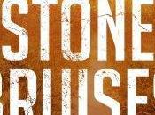 Stone Bruises, Simon Beckett