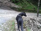Trekking Kelar Pets Evolution binomio perfetto..