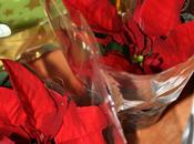 Piccola Poinsettia (Tutorial Farlocco)