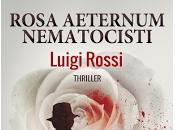 Intervista Luigi Rossi