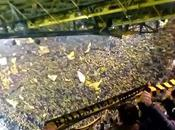 (VIDEO)Borussia Dortmund fans Signal Iduna Park Hoffenheim
