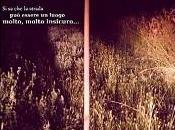 """Recensione Cortometraggio """"Miracolo Veneto"""" Raffaele Pastrello Luca Tassone"""
