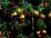 Preambolo Natale 2014