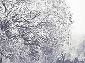 "nuovo album Jazz Friends ""White Notes"" trovate sotto l`albero Natale, FreeDownload."