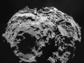 acqua sulla Terra portata dagli asteroidi, dalle comete