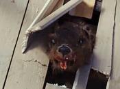 Zombeavers: tette castori zombie, cosa volere dalla vita?
