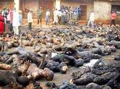 parigini valgono 2000 nigeriani?