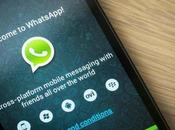 Come installare WhatsApp tablet Android WiFi