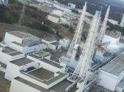 Giappone coltiva chiuso. Vicino Fukushima