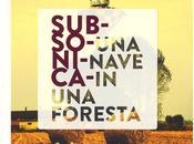 """Subsonica. """"Una Nave Foresta"""" affondo meandri dell'anima."""