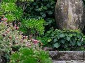 jardin Clos Peyronnet