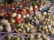 Frutta verdure importate dall'America dopo Cristoforo Colombo