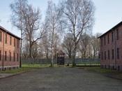 Auschwitz Birkenau: dimenticare