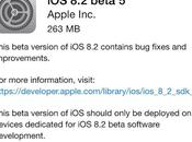 Apple rilascia beta agli sviluppatori iPhone, iPad iPod Touch, Link Diretti Download [Completato]