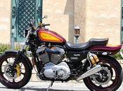 Harley 1200 2004 Glory Hole