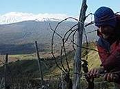 migliori vini dell'Etna secondo RVF)