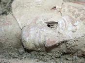 Scoperta necropoli nelle Saline Taranto