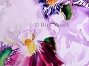 mattino degli iris irises morning