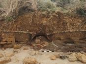 Recuperato dolio bizantino Israele