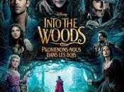 Cinemaholic with Fede careful what wish Recensione Into Woods