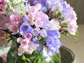 Delicati fiori primavera
