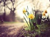 Aspettando primavera 2015