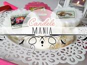 Candele mania yankee candle info shop