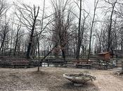 Scorci Padova: Parco Buzzaccarini Monselice