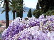 Riaproni Giardini Villa della Pergola Alassio