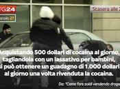 Come fare soldi vendendo droga SkyTG24 canale digitale terrestre